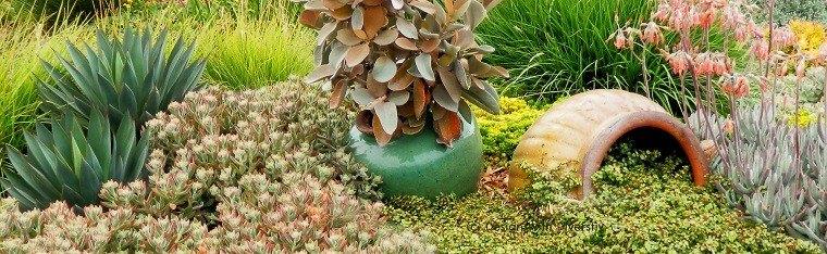 Macetas de barro rotas usadas para decorar for Adornos para jardin caseros
