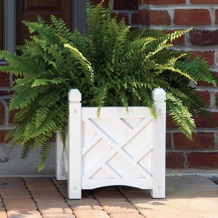 madera caja decoracion helechos blanco