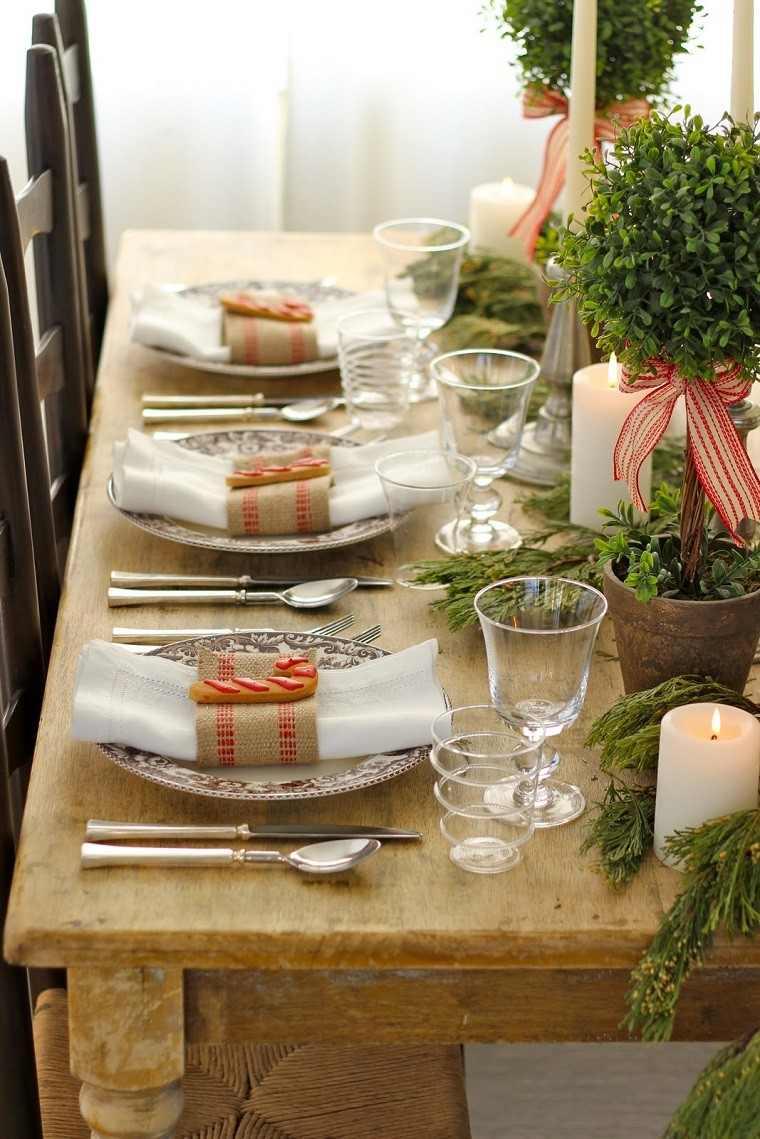 mesa con decoración macetas plantas lazos