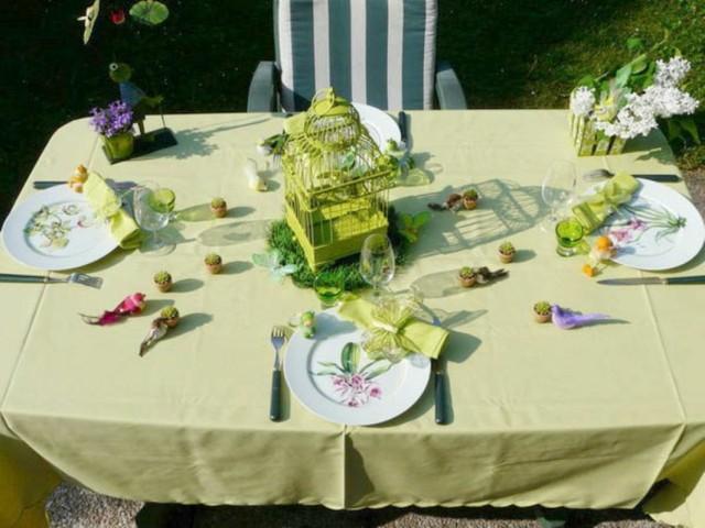 la primavera mesa verde natural jaula pajaros