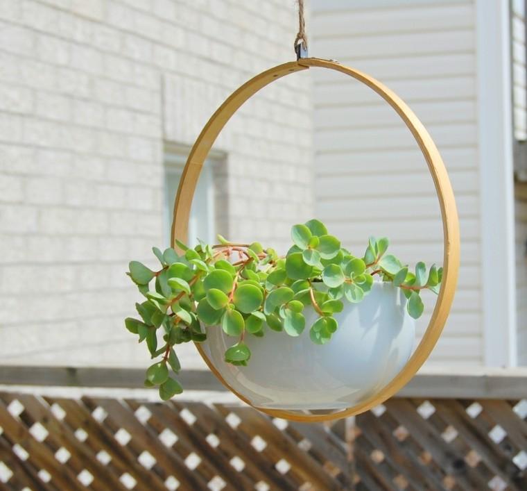 moderno creativo decoracion plantas circular