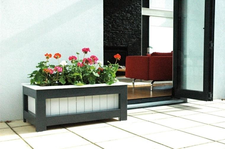 moderno planter decoración flores entrada