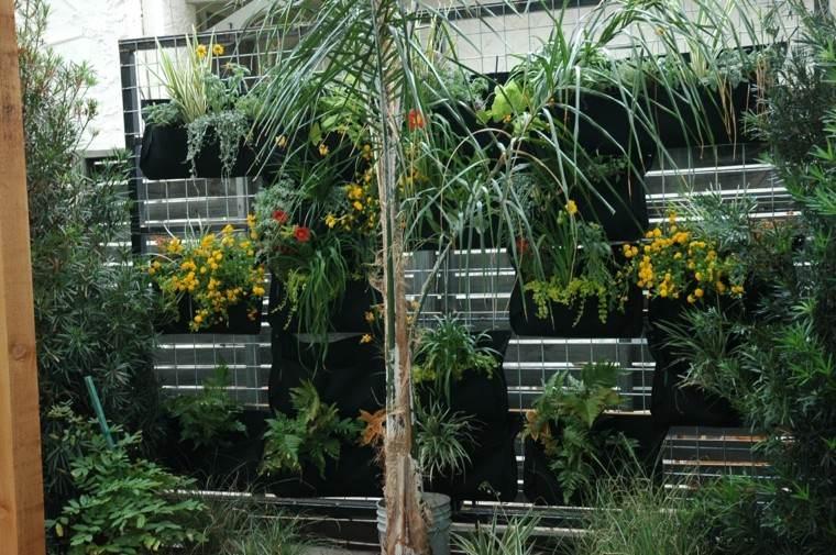 mundo natural ideas terraza plantas colgantes moderno