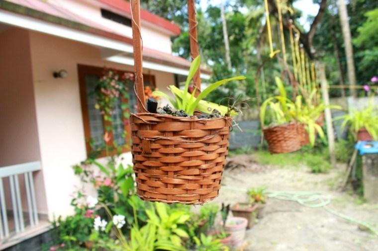 mundo natural jardin macetas terraza idea moderno