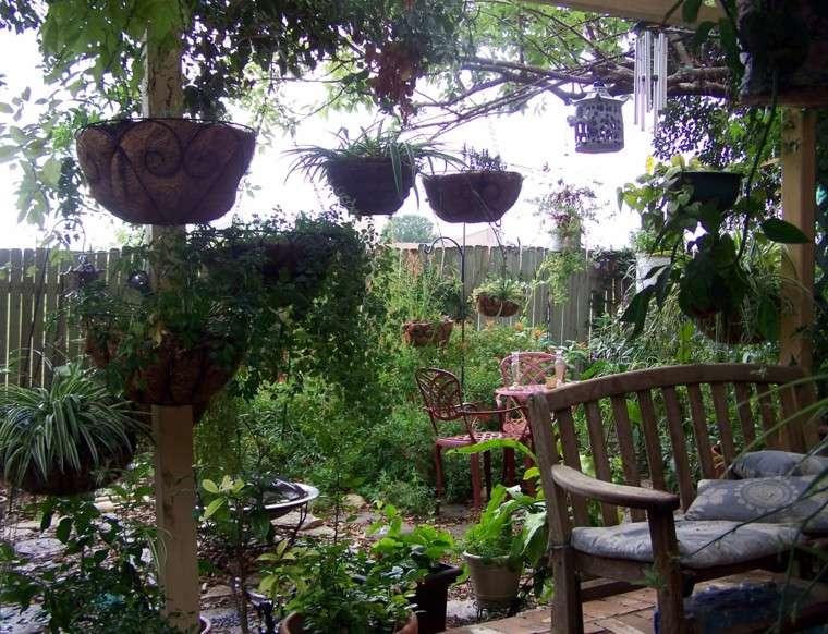 mundo natural jardin rustico macetas planta precioso