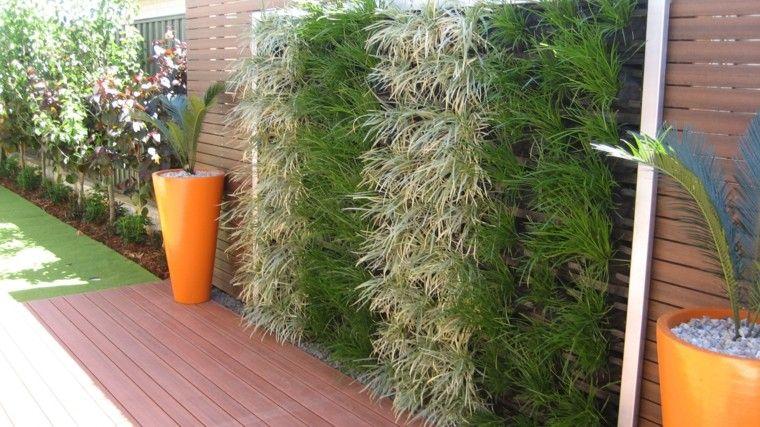mundo natural jardin vertical ideas plantas bonitas