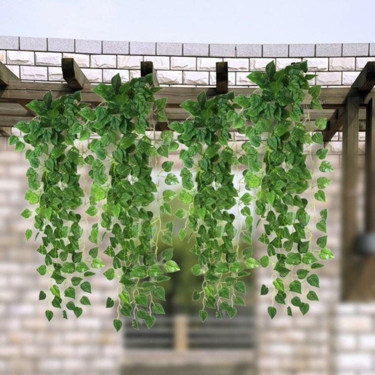 mundo natural sombra pergola plantas trepadoras ideas