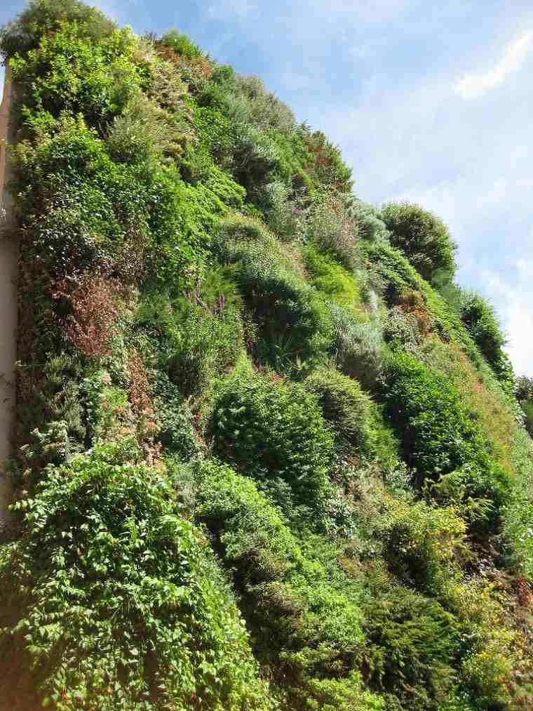 muro exterior jardines verticales naturales
