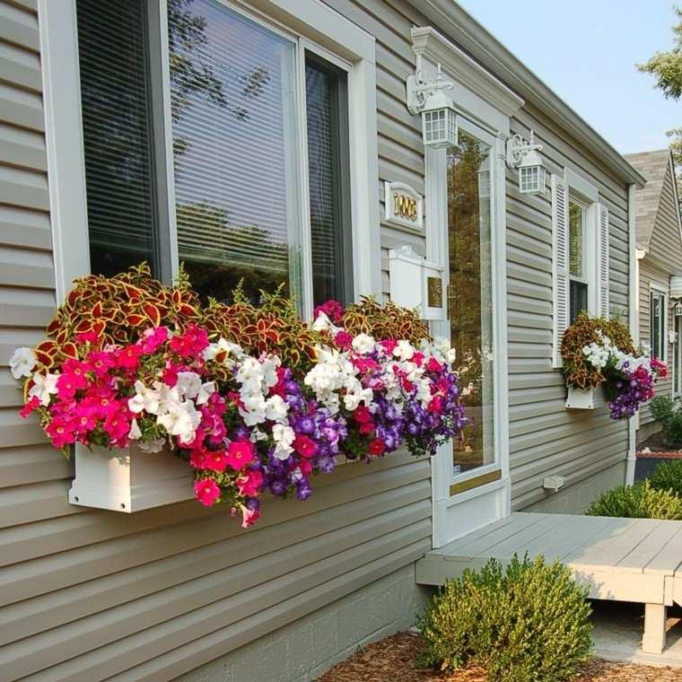 naturalidad ventana plantas aromas precioso idea