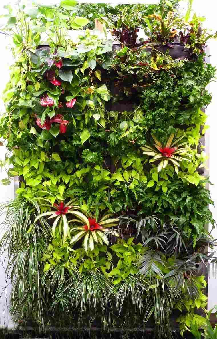 palmeritas colores jardines verticales bonitos