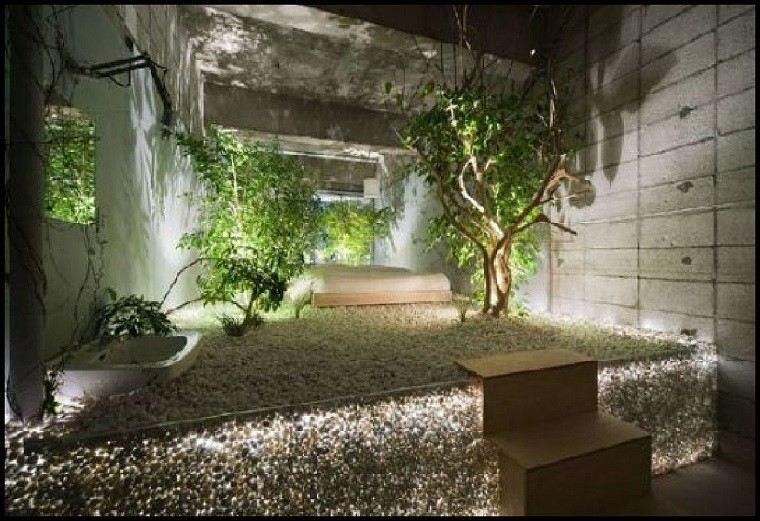 patio interior iluminado plantas piedras