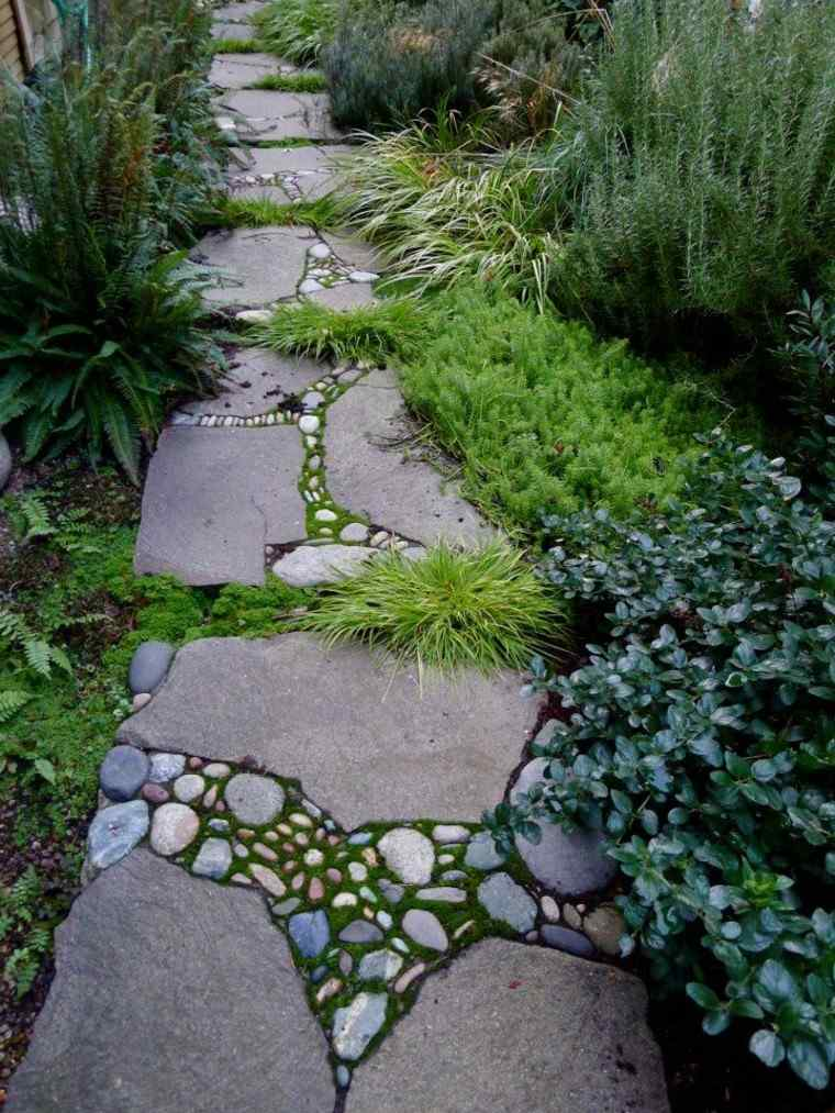 patio sendero ideas helechos natural