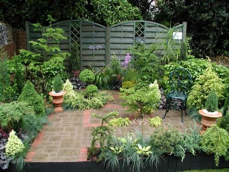 pequeño jardin lleno plantas macetas
