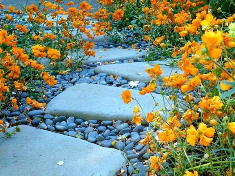piedras flores amarillas sendero rocas