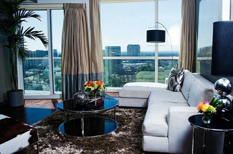 piel alfombra mesa plantas cortinas