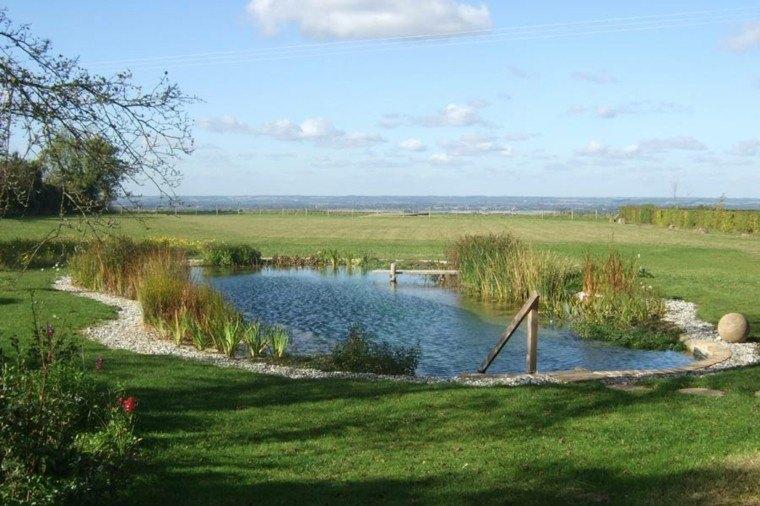 piscina campo filtros naturales plantas