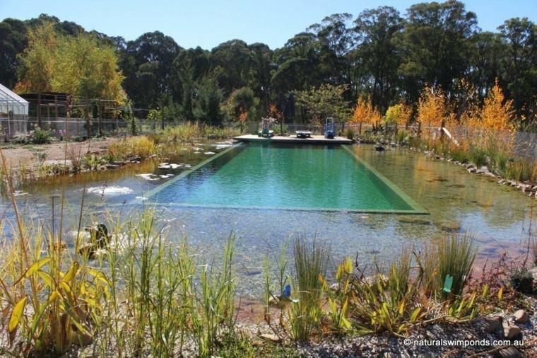 piscina grande filtro natural plantas