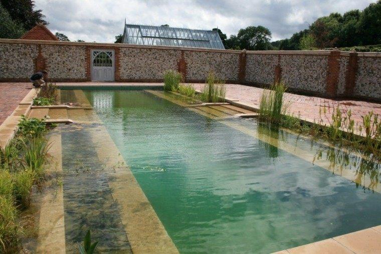 piscinas naturales biofiltros plantas acuaticas