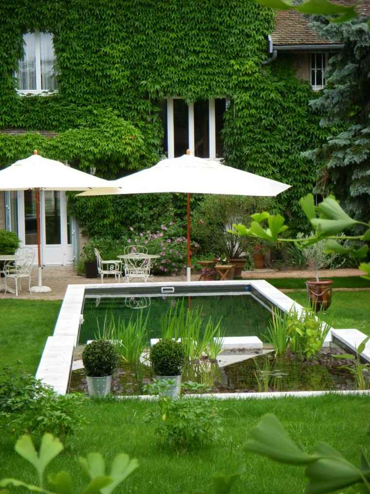 piscinas para jardín decoración plantas macetas