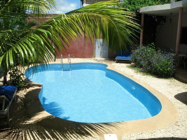 piscinas para jardín grava tumbona palmera