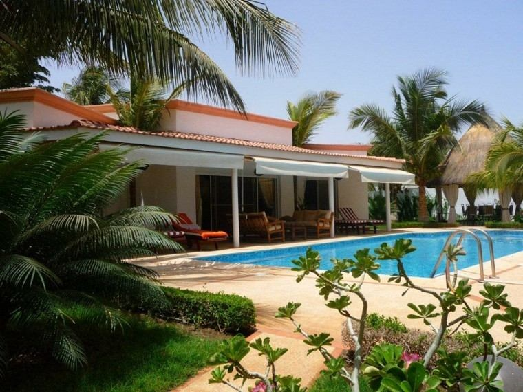 piscinas para jardín palmera terraza flores