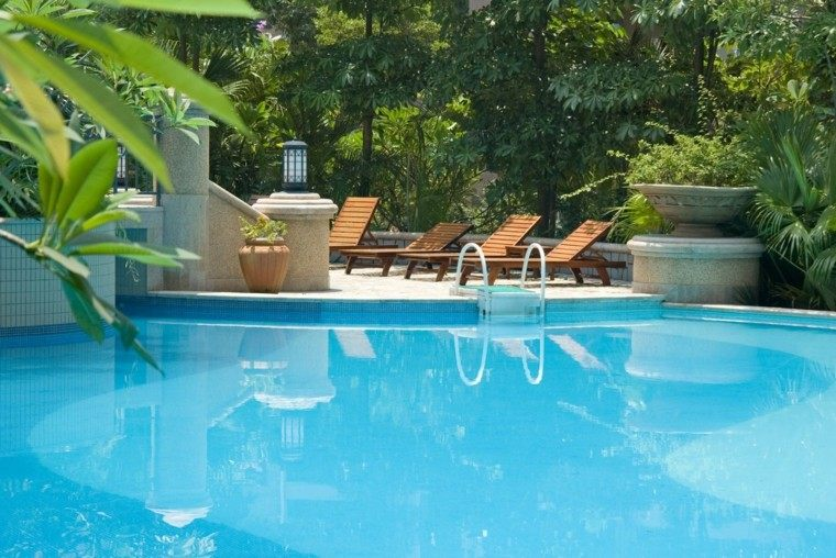 piscinas para jardín plantas escalera macetas