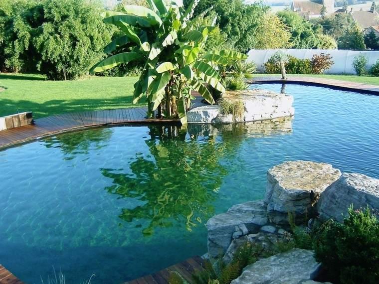 piscinas para jardín platanos cesped rocas