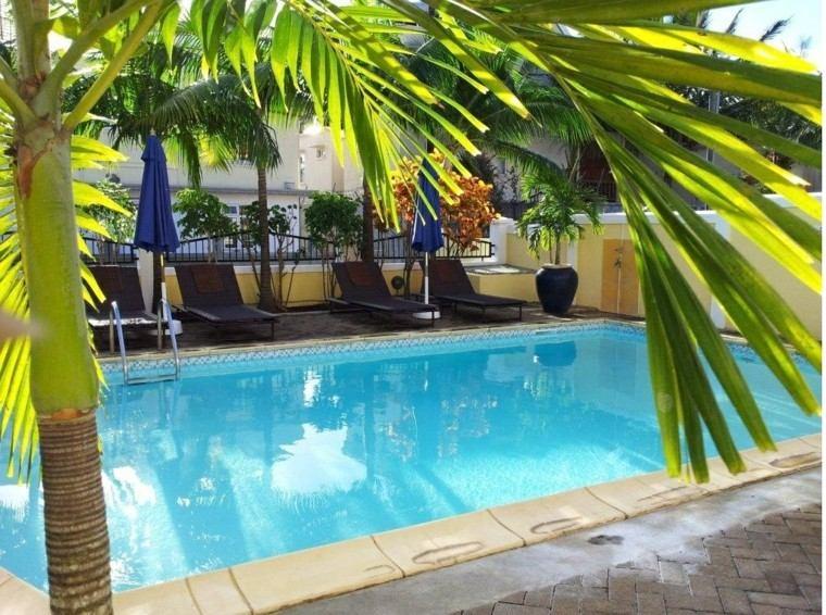 piscinas para jardín tumbonas sombrillas palmera