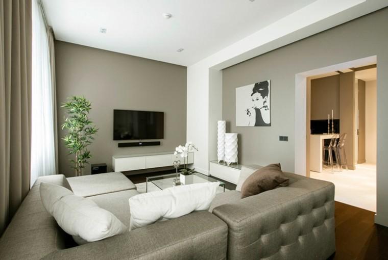 Pisos de solteros ideas para decorar tu nuevo hogar - Salon piso pequeno ...