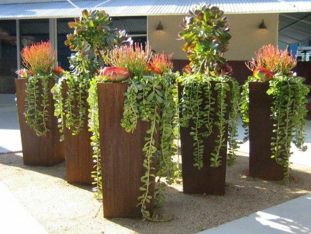 plantas colgantes metal exterior cascada