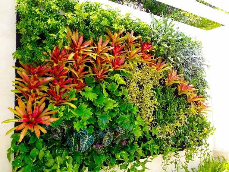 Jard n vertical naturalidad en cualquier lugar for Plantas jardin vertical