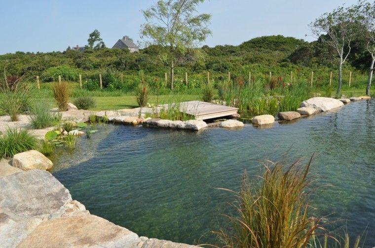 plataforma madera piscina natural plantas