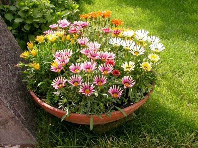 Flores bonitas que no deben faltar en el jard n for Jardin o jardin