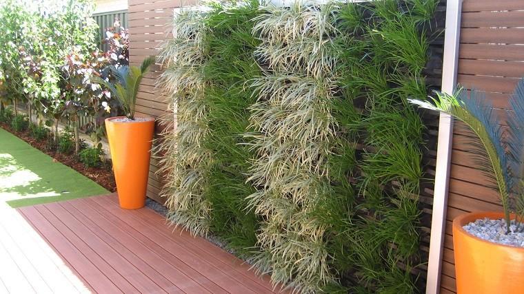pluma mejicana valla jardin vertical