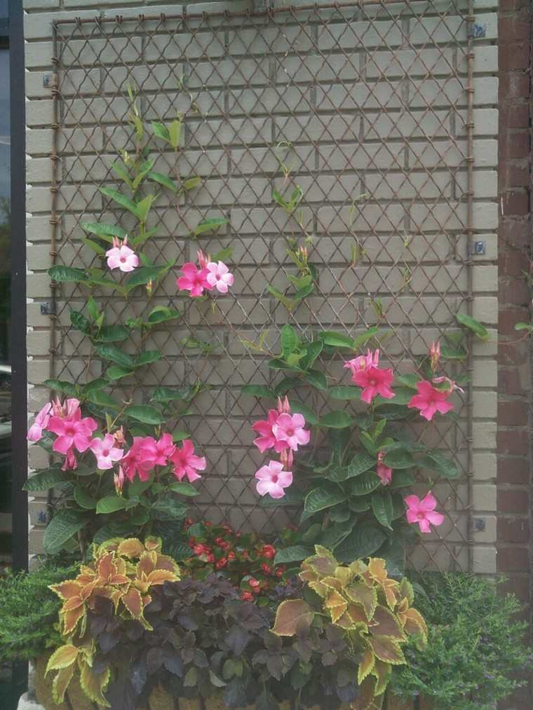 rejas metal flores en valla