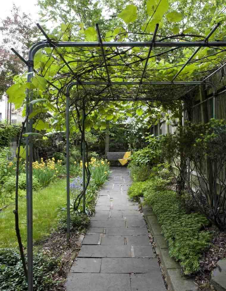 rejas pergola plantas enredadas camino