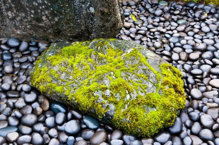 roca musgo estilo zen piedras