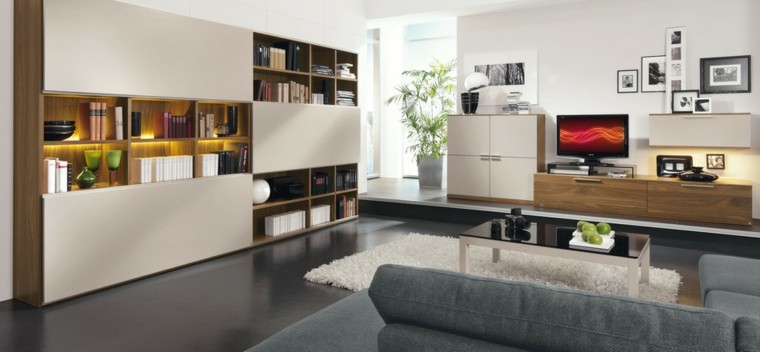 tecnologia moderna armario estanterias ideas pared muebles