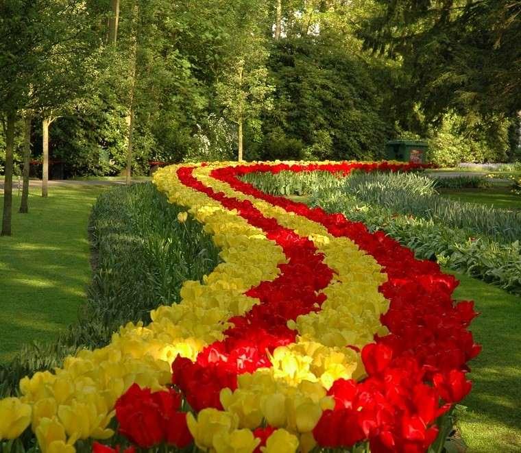 tulipanes amarillos rojos ideas bonitas jardines amplio grandes