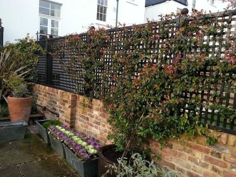 Estilo en el jard n con enrejados para plantas trepadoras for Estructuras de jardin