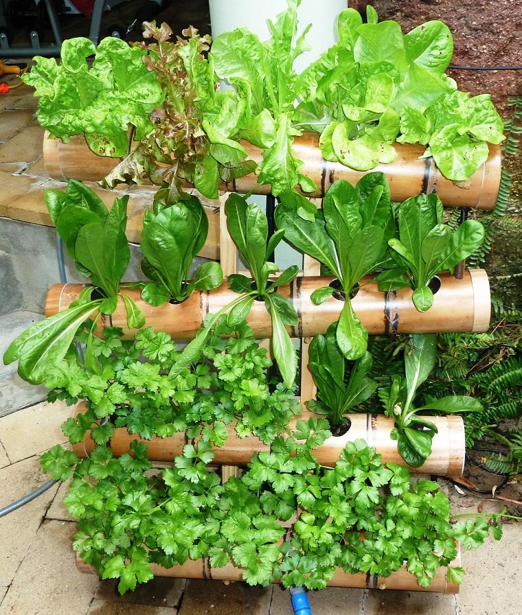 verduras maceta bambu ideas jardin hogar