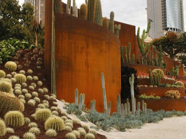 xeriscape cactus moderno muro acero