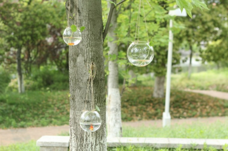 acuarios colgantes peceras arbol cristal