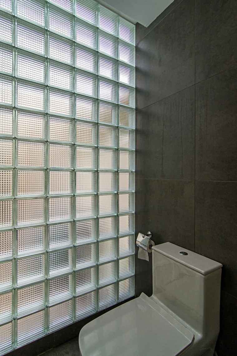 baño vidrio pared oscuro diseño