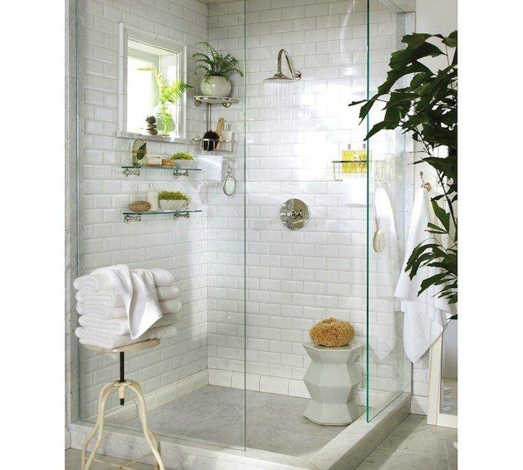 bano preciosa ducha mampara blanco plantas ideas