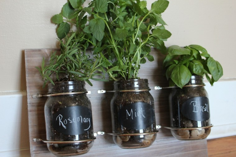 botes cristal tarros hierbas aromaticas