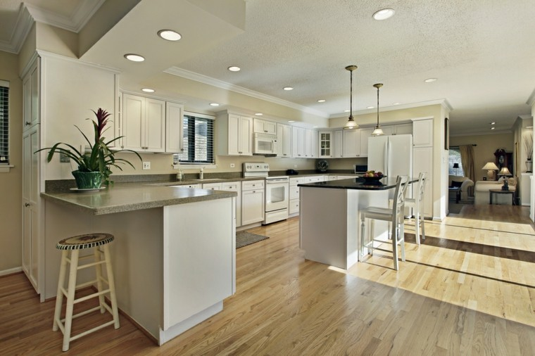cocinas amplias armarios madera encimeras granito moderna