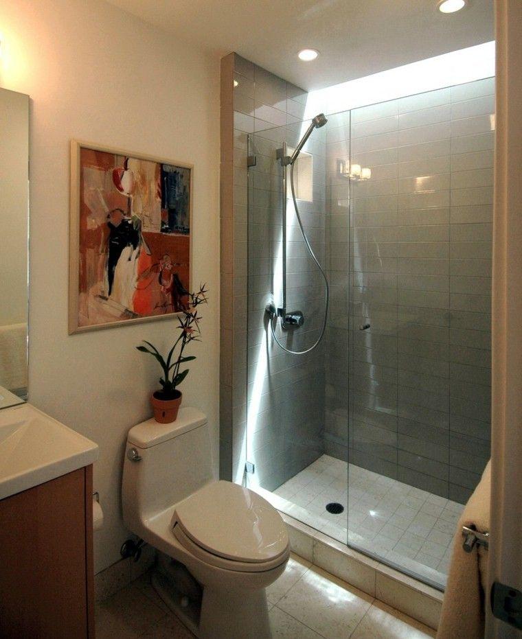 cuartos de bano con ducha planta decorativa cuadro ideas