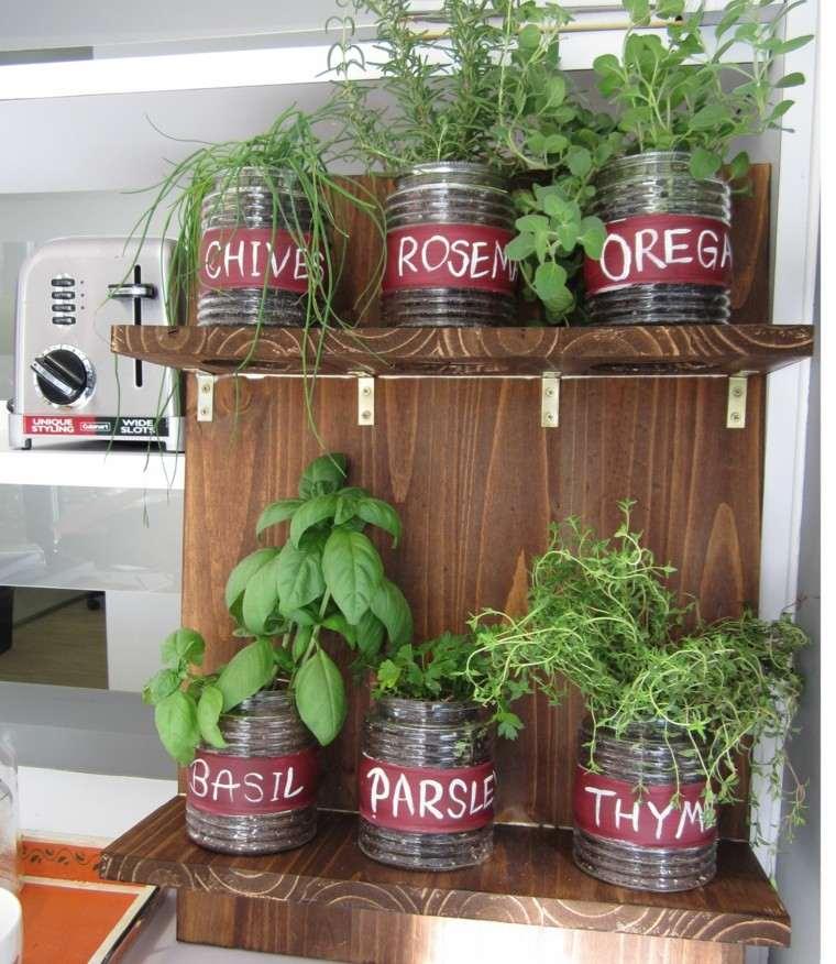 cultivar especias interior casa botes