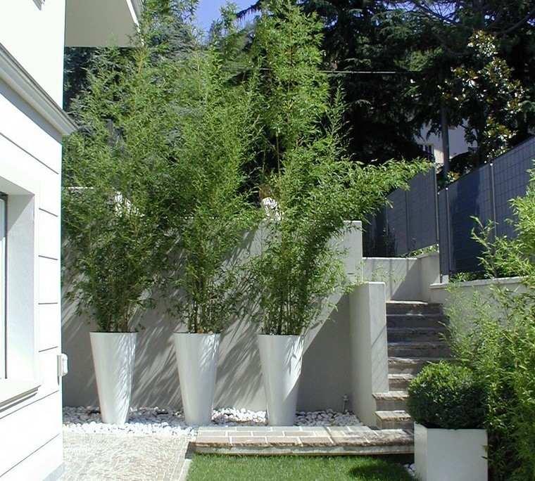 diseño de jardines modernos bambu maceteros elegantes
